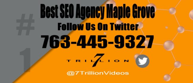 Best SEO Agency Maple Grove Follow Us On Twitter